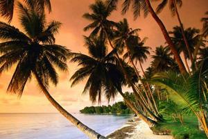 image Phu Quoc Island